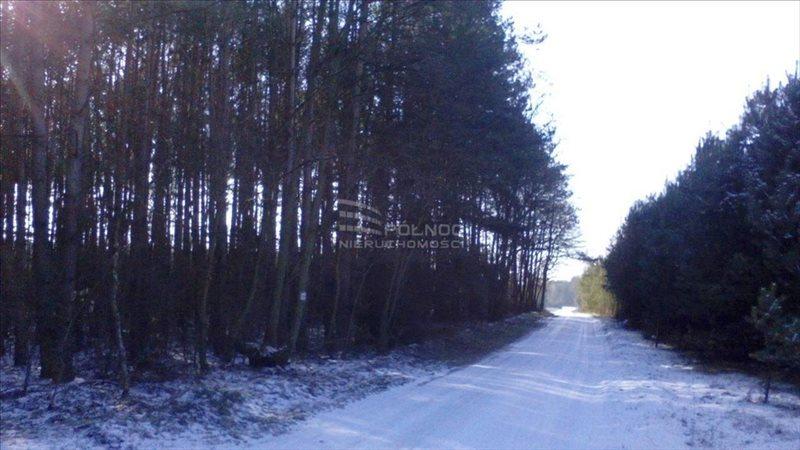 Działka leśna na sprzedaż Żdżary  36600m2 Foto 2