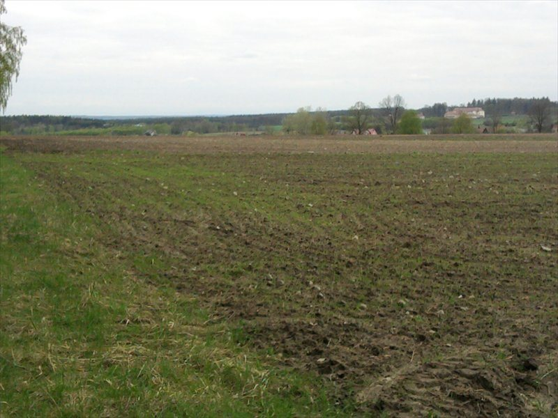Działka rolna na sprzedaż Rościsławice, Rościsławice  10200m2 Foto 3