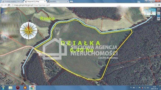 Działka leśna na sprzedaż Skwierawy  64900m2 Foto 4