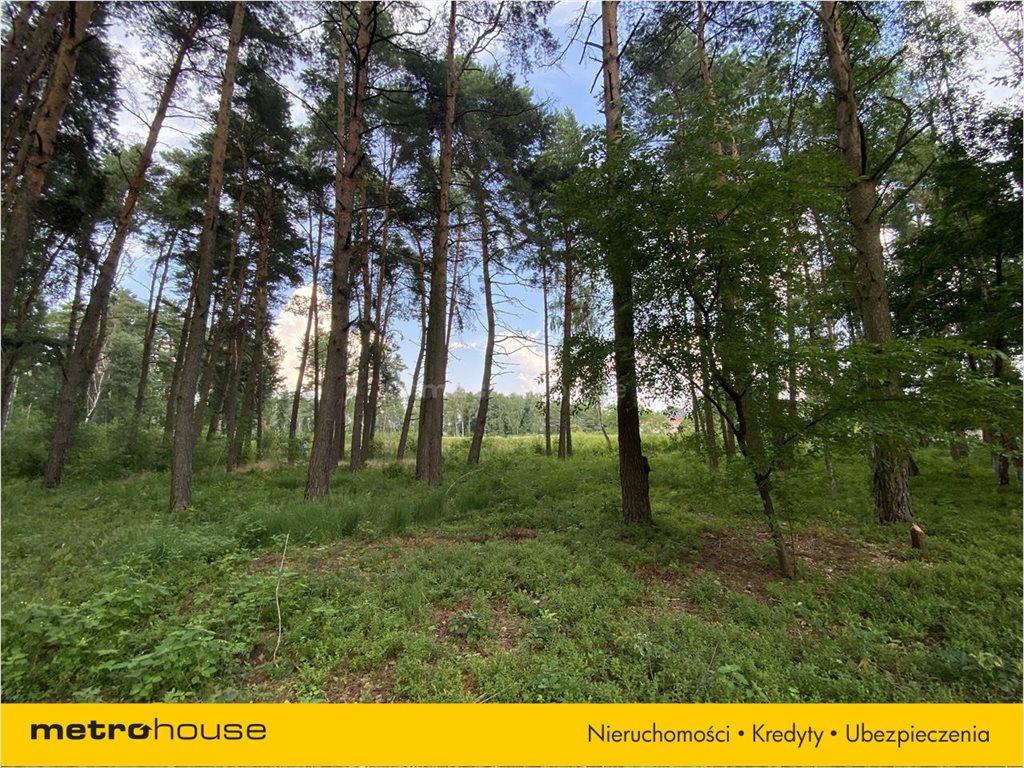 Działka leśna na sprzedaż Władysławów, Lesznowola  3128m2 Foto 3