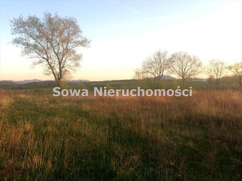 Działka budowlana na sprzedaż Świebodzice, ok. 5 km od Świebodzic  984m2 Foto 3