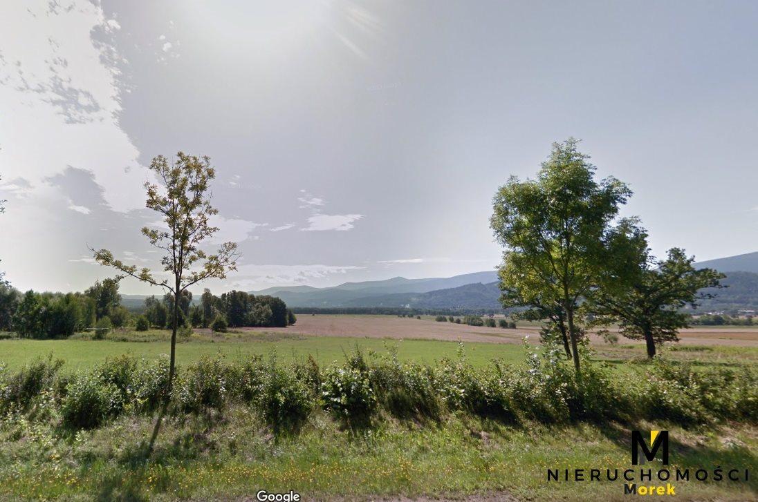 Działka budowlana na sprzedaż Wojcieszyce  1950m2 Foto 7