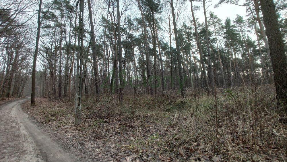 Działka leśna z prawem budowy na sprzedaż Warszawa, Wawer, Anin  2030m2 Foto 3