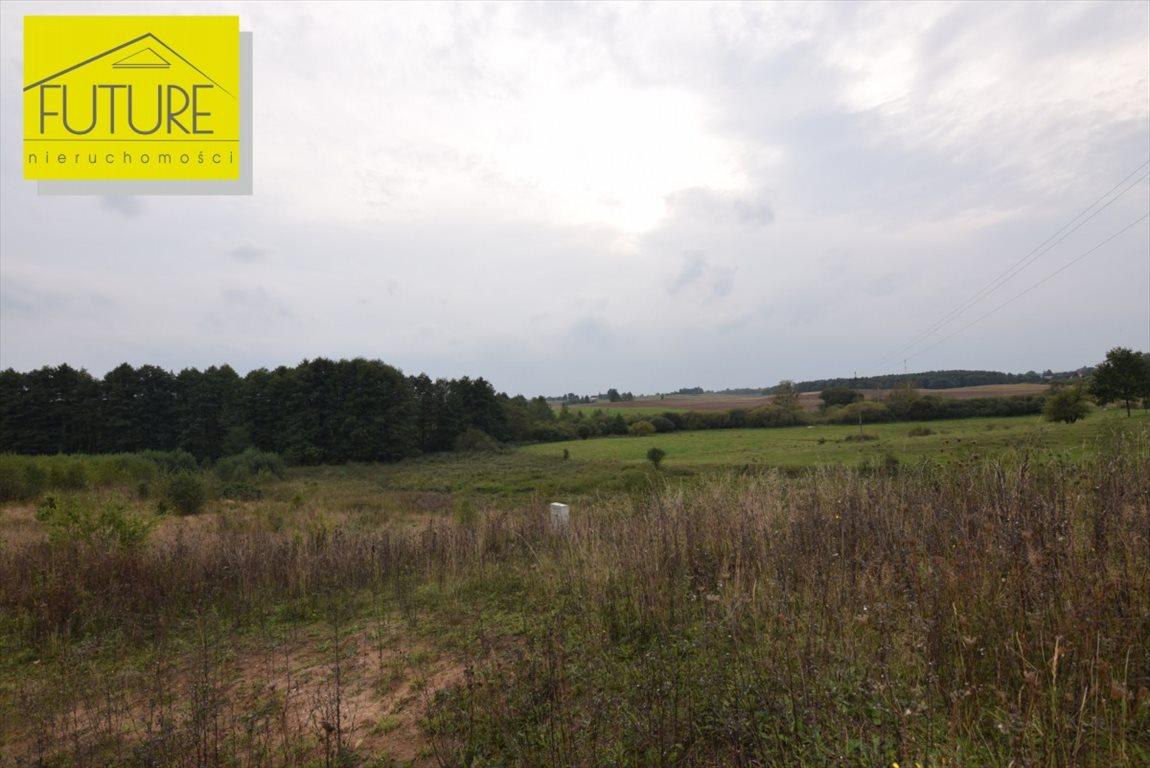 Działka rolna na sprzedaż Liksajny  1162m2 Foto 10