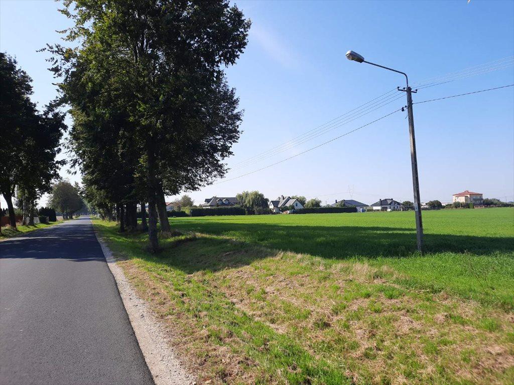 Działka siedliskowa na sprzedaż Wilkowa Wieś  4033m2 Foto 11