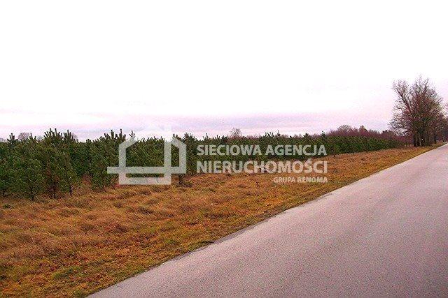Działka leśna na sprzedaż Strzeczona  206330m2 Foto 12