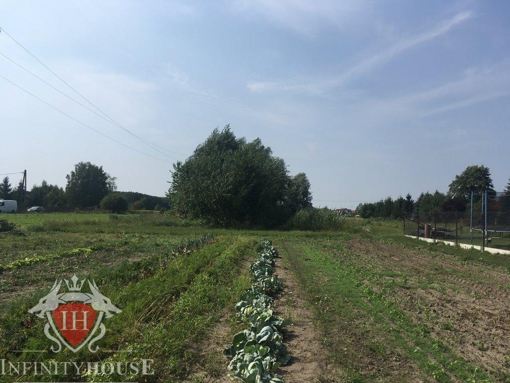 Działka rolna na sprzedaż Wólka Grodziska  4914m2 Foto 3