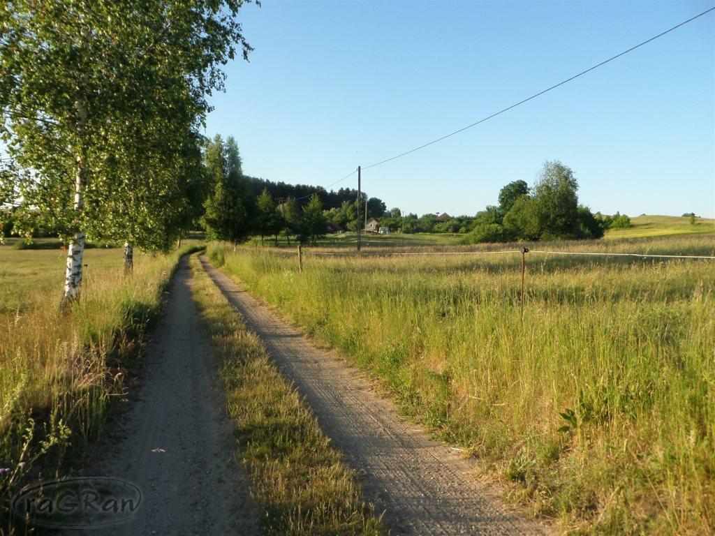 Działka rolna na sprzedaż Stare Kawkowo  3206m2 Foto 1