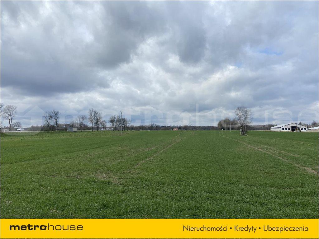 Działka rolna na sprzedaż Rogoźnica, Międzyrzec Podlaski  14100m2 Foto 4