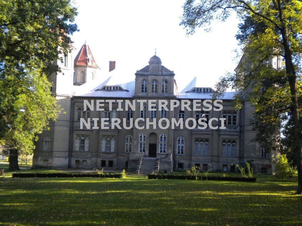 Lokal użytkowy na sprzedaż Dąbrówka Wielkopolska  4500m2 Foto 6