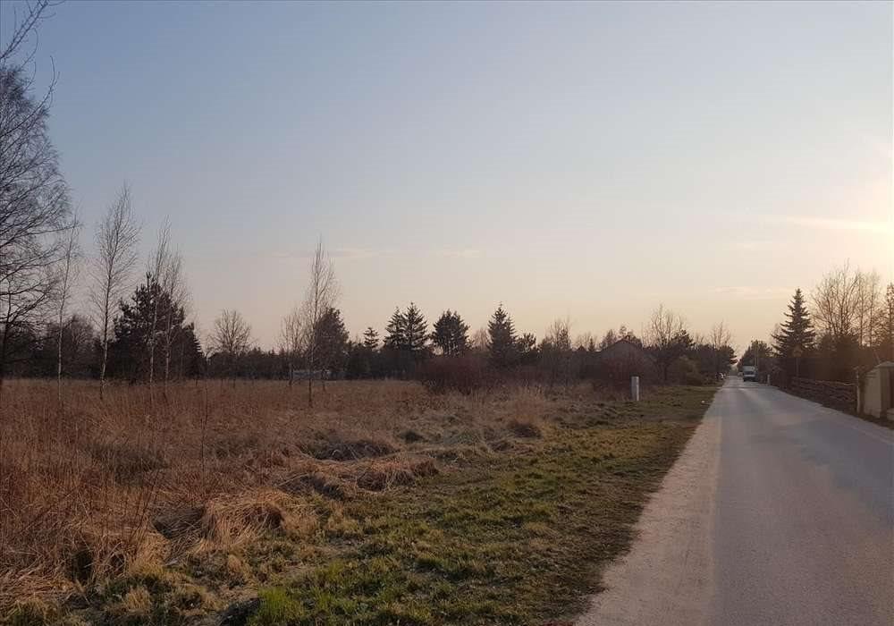 Działka przemysłowo-handlowa na sprzedaż Stara Wieś  10000m2 Foto 2