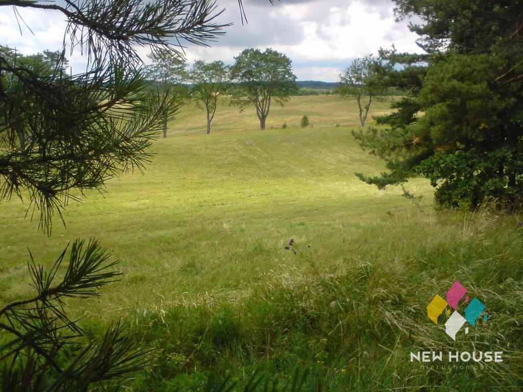 Działka rolna na sprzedaż Pupki  3037m2 Foto 3