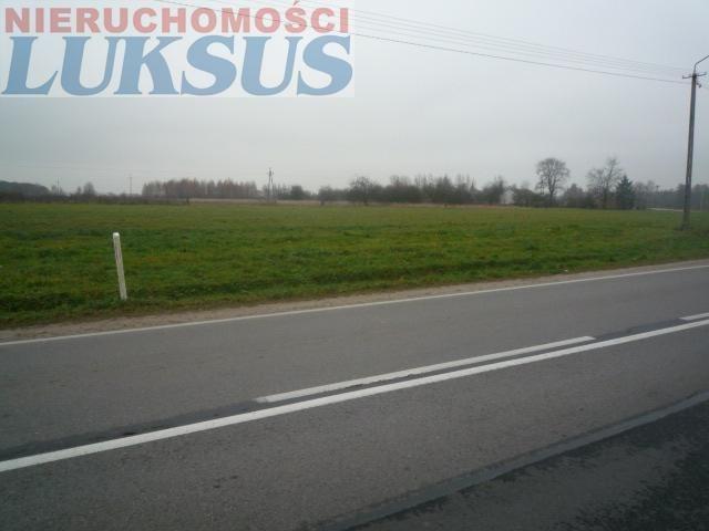 Działka rolna na sprzedaż Prażmów, Prażmów  10000m2 Foto 6
