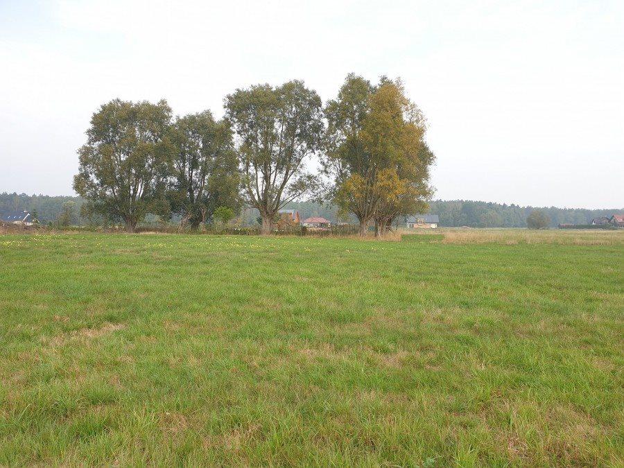 Działka rolna na sprzedaż Dobra, TRASZKI  3350m2 Foto 4