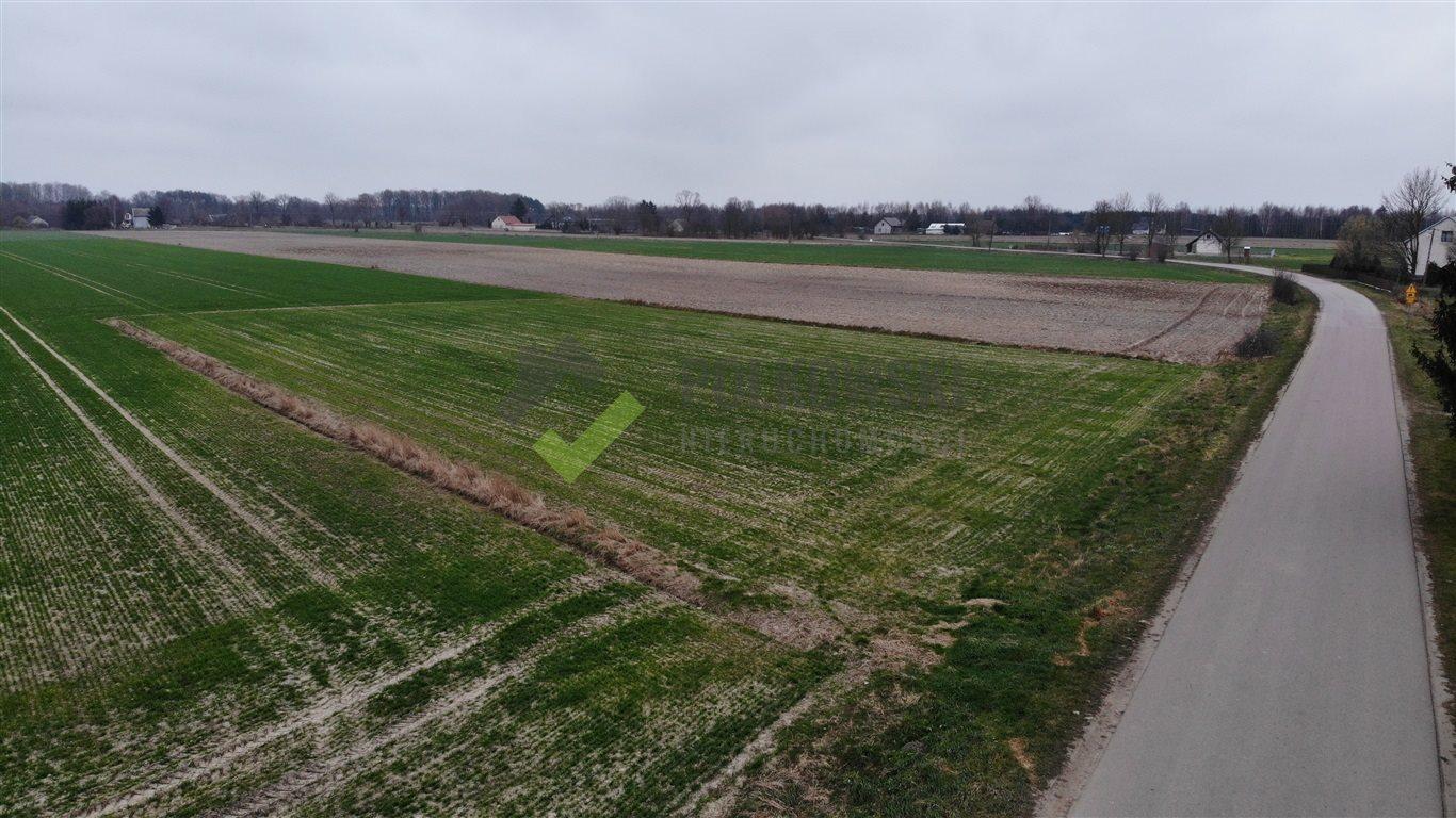 Działka rolna na sprzedaż Strzeszewo  3000m2 Foto 4