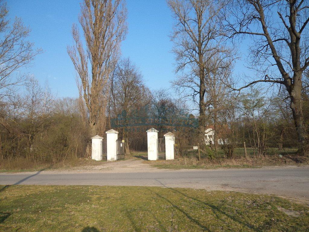 Dom na sprzedaż Mogielnica  684m2 Foto 13