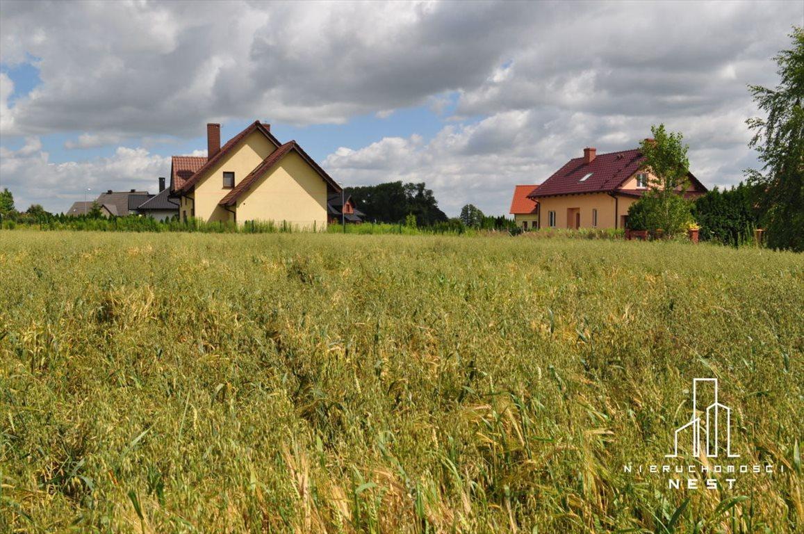 Działka budowlana na sprzedaż Kórnik, 3 km od centrum Kórnika  775m2 Foto 3