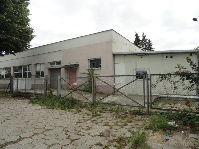 Lokal użytkowy na sprzedaż Elbląg, Rybna  579m2 Foto 4