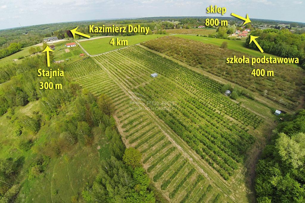 Działka rolna na sprzedaż Kazimierz Dolny, Wylągi  21600m2 Foto 3