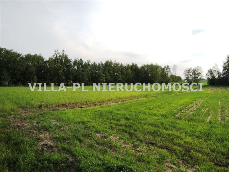 Działka rolna na sprzedaż Gieczno  3670m2 Foto 2