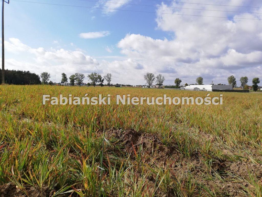 Działka inwestycyjna na sprzedaż Złotkowo  12800m2 Foto 5
