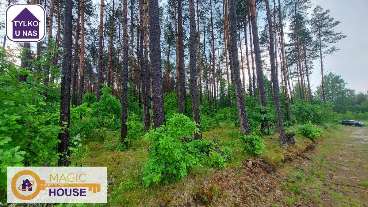 Działka leśna na sprzedaż Gołubie  18900m2 Foto 1