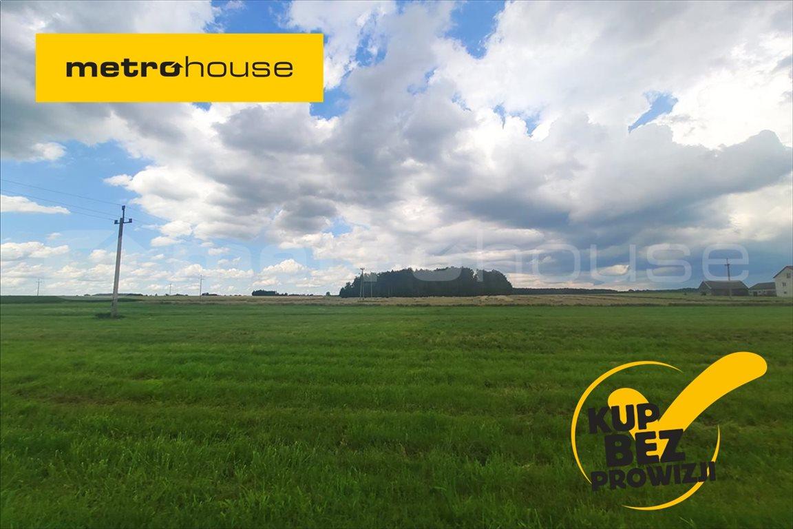 Działka rolna na sprzedaż Krasów, Sokołów Podlaski  43m2 Foto 1