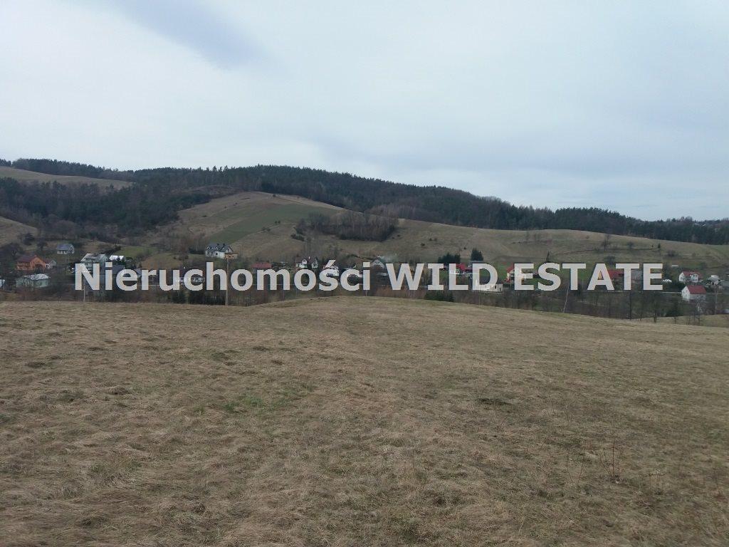Działka rolna na sprzedaż Solina, Wola Matiaszowa  7900m2 Foto 3
