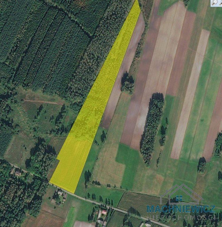 Działka leśna na sprzedaż Kębliny  33500m2 Foto 2