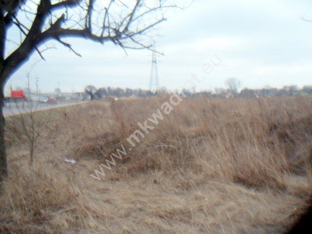 Działka inwestycyjna na sprzedaż Chrzanów Duży  2793m2 Foto 4
