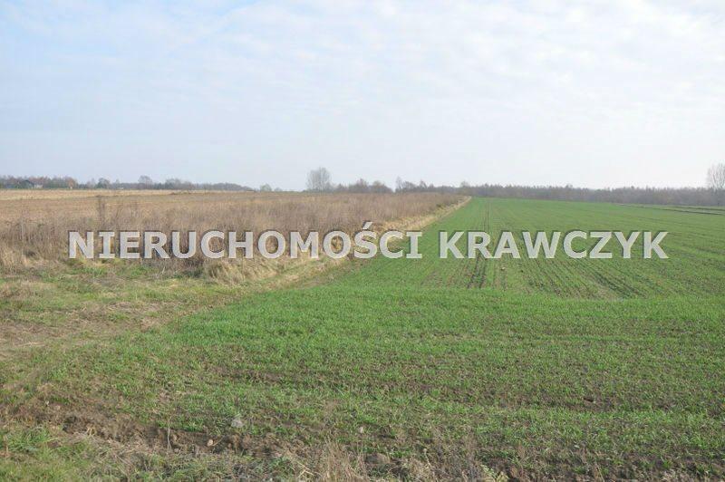 Działka rolna pod dzierżawę Mikołajewice, -  14000m2 Foto 1