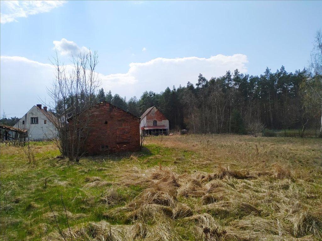 Działka budowlana na sprzedaż Czeszów, Zawonia  3168m2 Foto 5