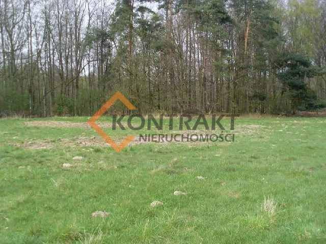 Działka rolna na sprzedaż Przęsocin  3005m2 Foto 6