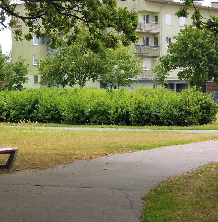 Mieszkanie trzypokojowe na sprzedaż Poznań, Stare Miasto, Piątkowo  58m2 Foto 1