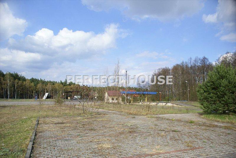 Lokal użytkowy na sprzedaż Trzciel  8000m2 Foto 2