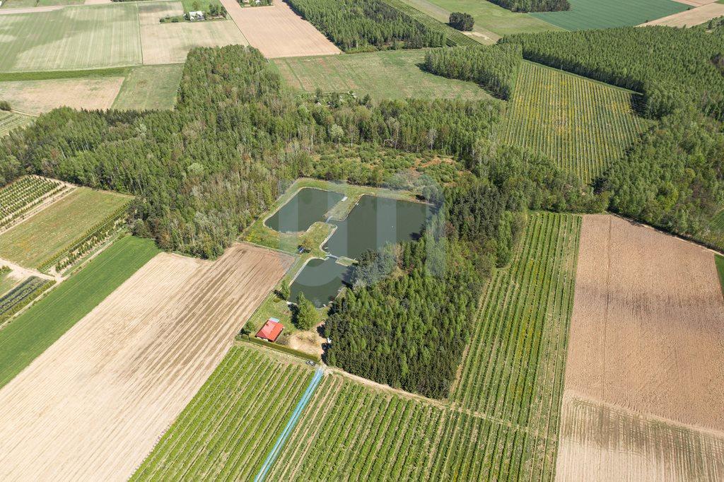 Działka siedliskowa na sprzedaż Zimnice, Piekarska  24000m2 Foto 2