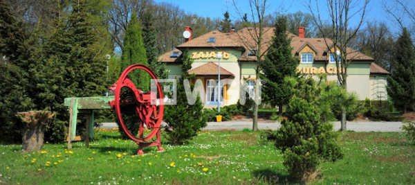 Działka inwestycyjna na sprzedaż Jerzmanowa, Głogowska  32400m2 Foto 2
