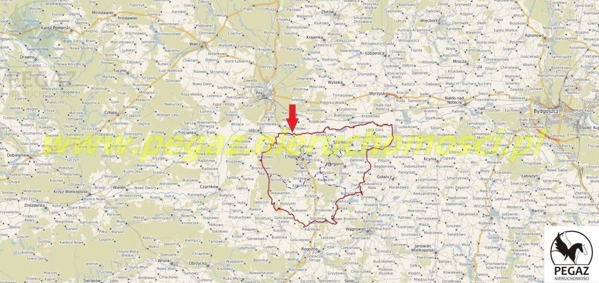 Działka rolna na sprzedaż Milcz, Holna / Zajęcza  6175m2 Foto 2
