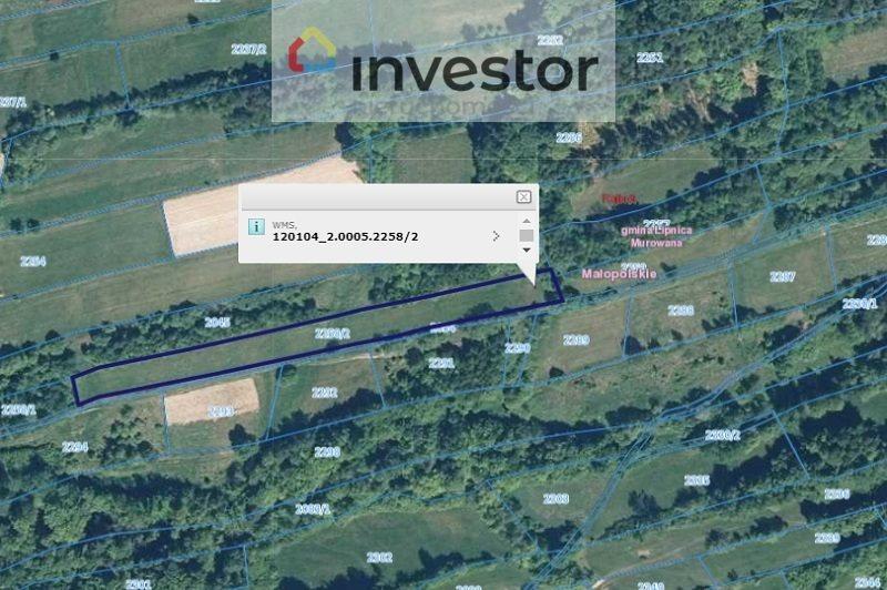 Działka rolna na sprzedaż Rajbrot  30300m2 Foto 7