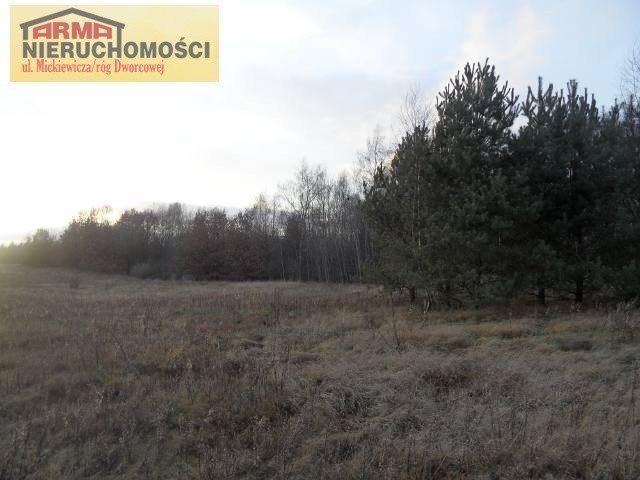 Działka budowlana na sprzedaż Grabowo  3095m2 Foto 7