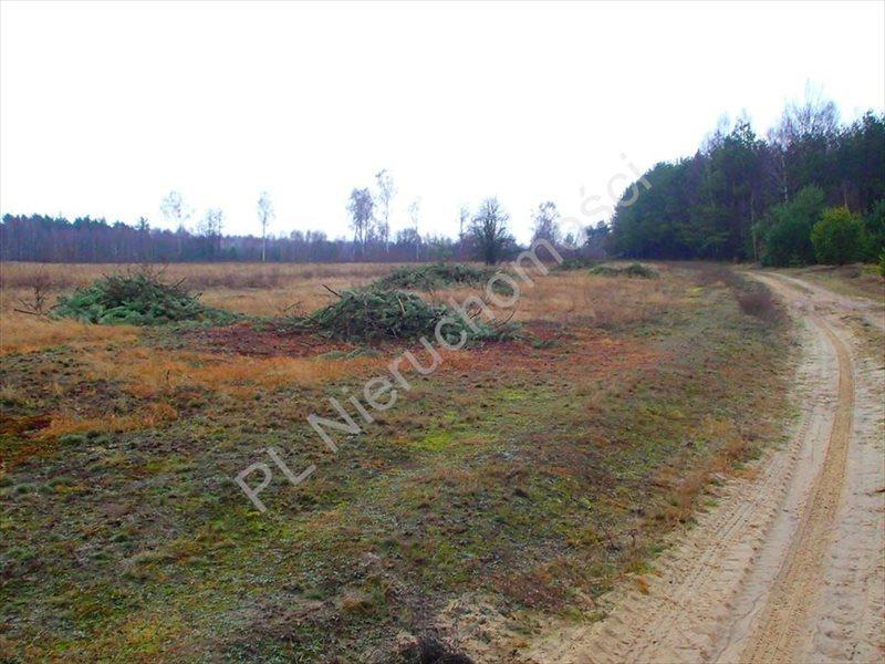 Działka rolna na sprzedaż Budy Przytockie  2700m2 Foto 1