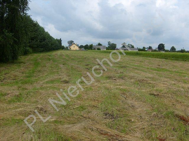 Działka budowlana na sprzedaż Kozery  3001m2 Foto 2