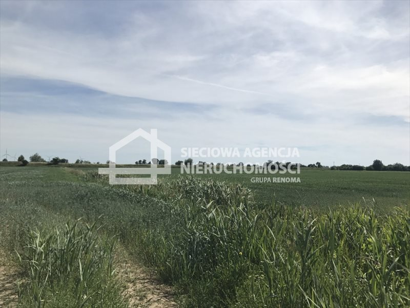 Działka rolna na sprzedaż Rybina  77672m2 Foto 6