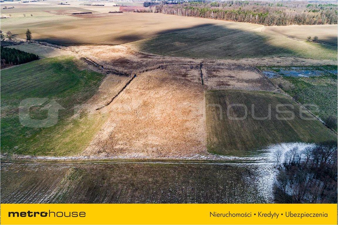 Działka rolna na sprzedaż Piskajny, Godkowo  11900m2 Foto 4