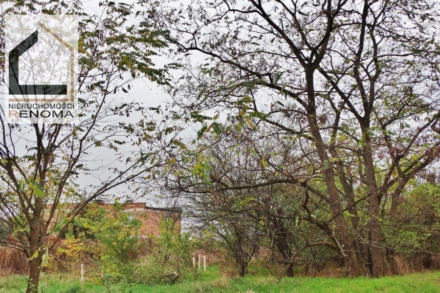 Działka budowlana na sprzedaż Wiry  3729m2 Foto 1