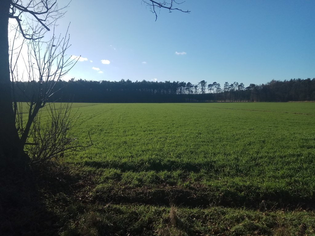 Działka rolna na sprzedaż Błażejewo  16300m2 Foto 1