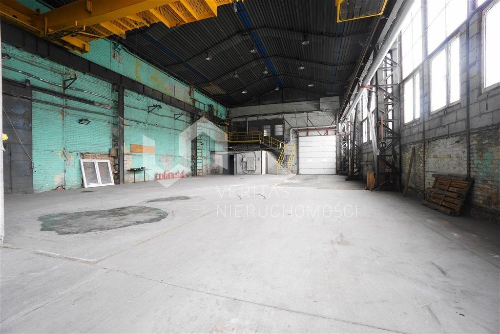 Lokal użytkowy na wynajem Sosnowiec  1240m2 Foto 2