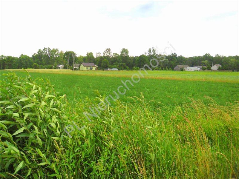 Działka rolna na sprzedaż Lubomin  14500m2 Foto 6
