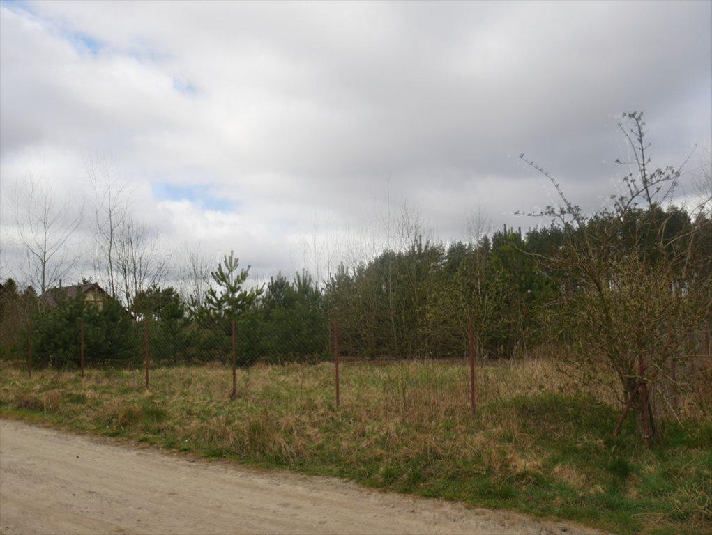 Działka budowlana na sprzedaż Strzepcz, ks. Blocków  1529m2 Foto 4