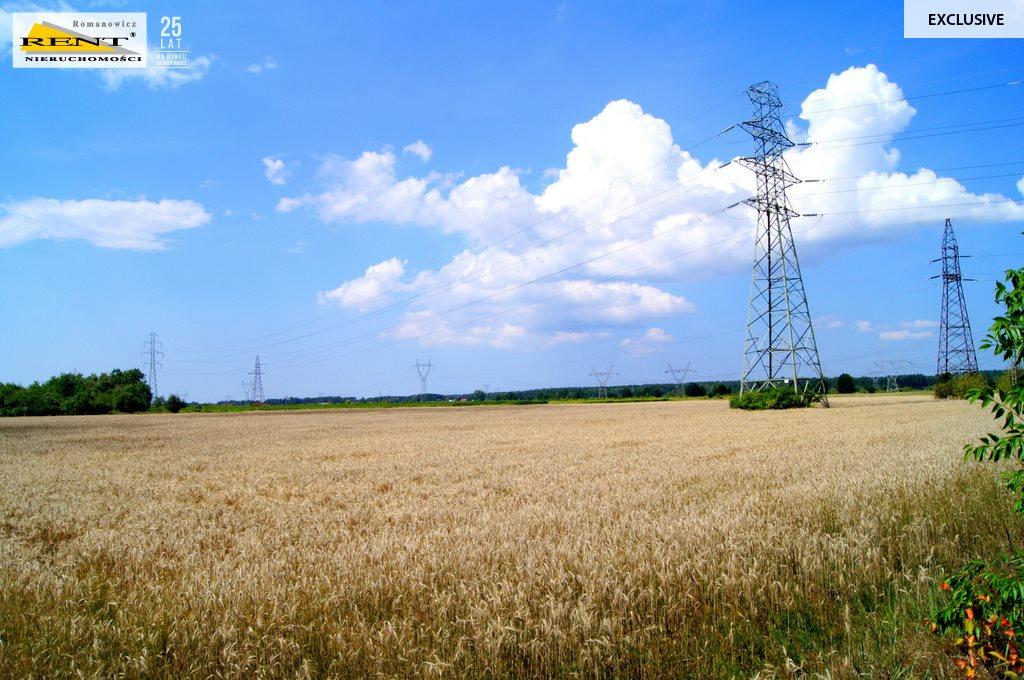 Działka rolna na sprzedaż Kobylanka  3001m2 Foto 1